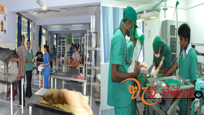 Sri Lanka's first fully-pledged hospital for animals