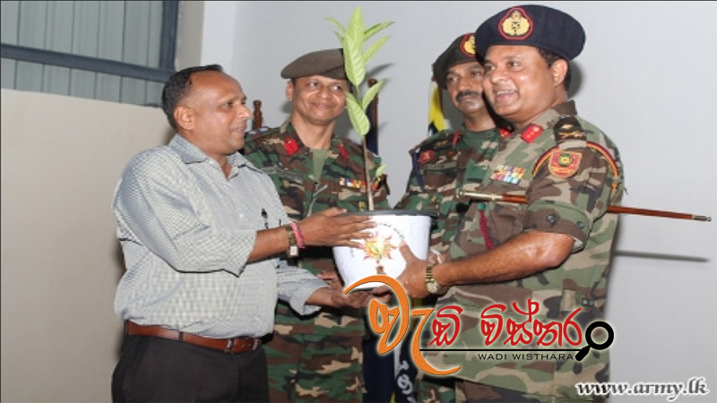troops-commence-major-green-project-in-kilinochchi