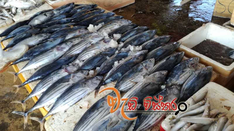 steps-to-control-escalating-fish-prices-during-festive-season