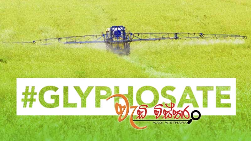 cabinet-approves-lifting-glyphosate-ban-for-36-months