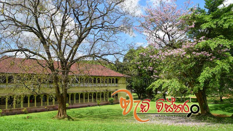 four-faculties-university-peradeniya-reopens-today