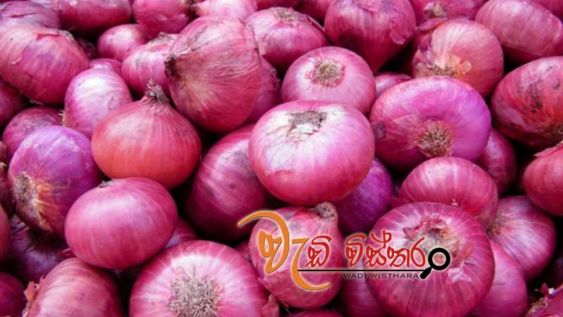 import-levy-on-big-onions-hiked