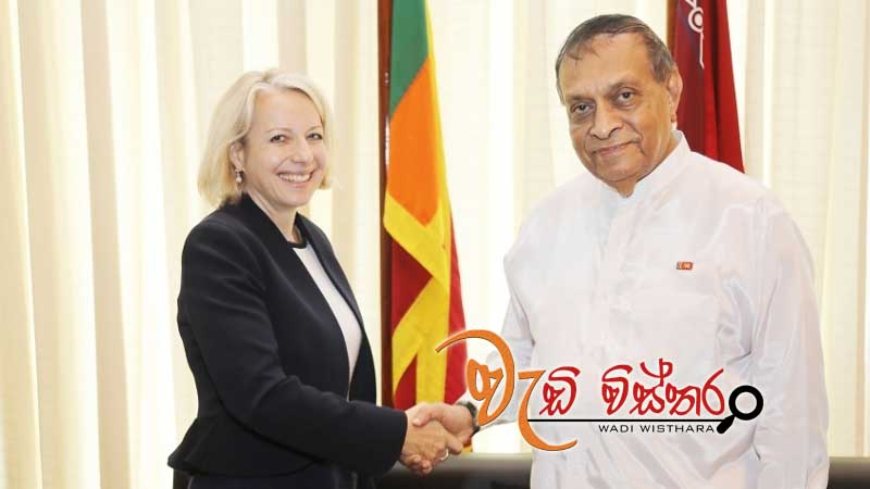 new-british-high-commissioner-meets-speaker